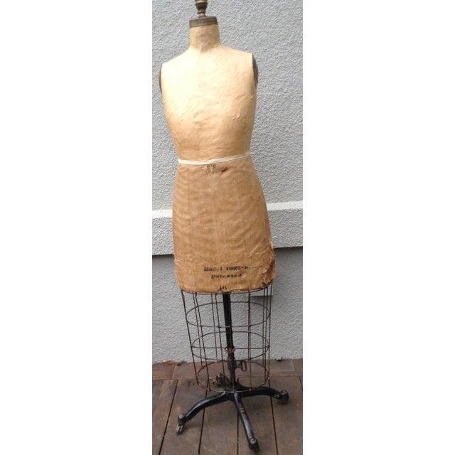 Antique Mannequin Dress Form /Palmenbergs - Image 2 of 7