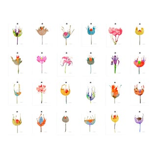 Colorful Botanical Prints - Set of 24