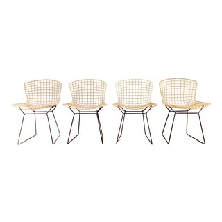 Harry Bertoia for Knoll Associates Side Chairs - Set of 4