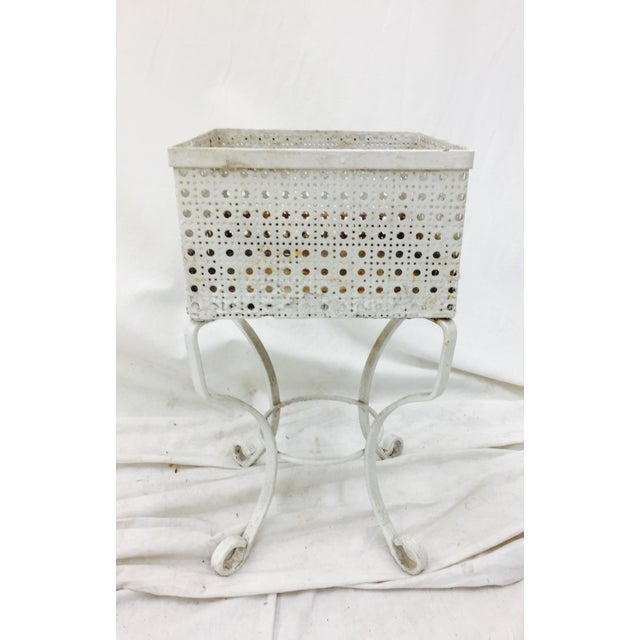 Victorian White Cane Metal Planter Stand - Image 5 of 5