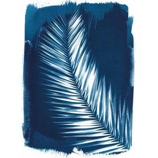 Palm Tree Leaf Cyanotype Print