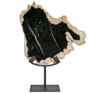 Petrified Wood Slice Sculpture