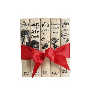 1920's Vintage Book Gift Set: Boys Mystery - Set of 4