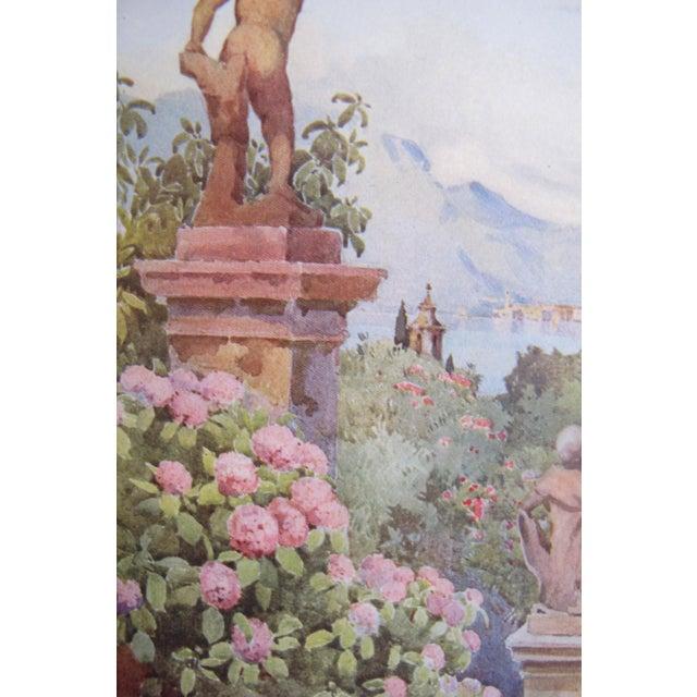 1905 Ella du Cane Print, Hydrangeas, Isola Bella, Lago Maggiore - Image 3 of 4