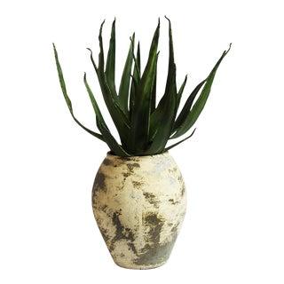 Earth Ware Vase & Faux Aloe Vera