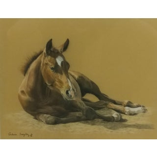 Signed Valery Trozelle Young Horse Resting Watercolor Painting