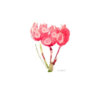 Raspberry Red Tulips Print