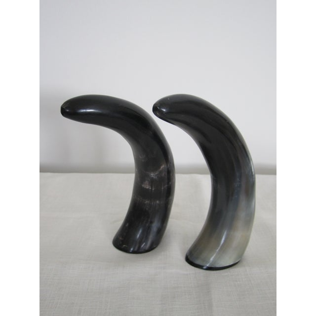 Authentic Black & White Horn Sculptures - A Pair - Image 3 of 7