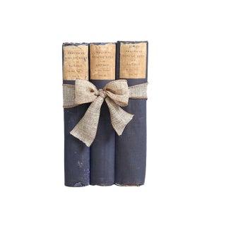 Antique Book Gift Set: Liturgical Discourses - Set of 3