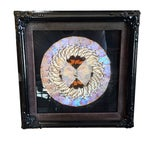Image of Victorian Butterfly Framed Under Glass