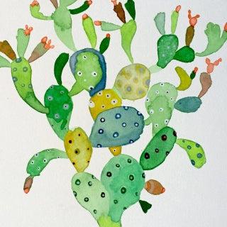 Cactus Dancer by Steve Klinkel