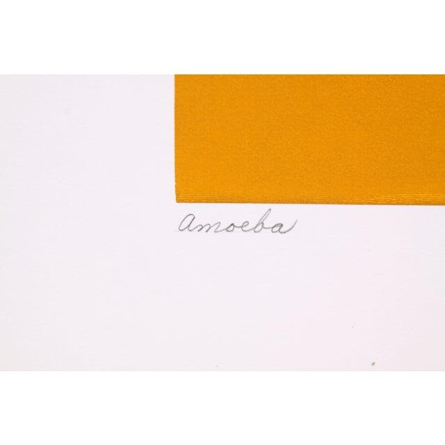 Circular Biomorphism Print by T. Confer, 1975 - Image 6 of 6