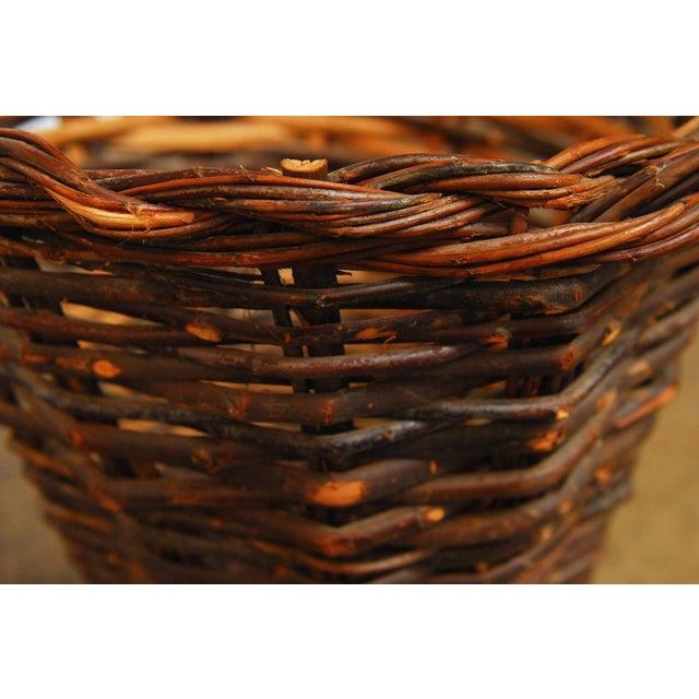 Image of French Vineyard Harvest Basket