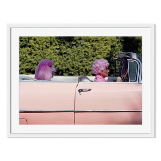 """Pink Hair, Pink Poodle, Pink Car"" Framed Photo"