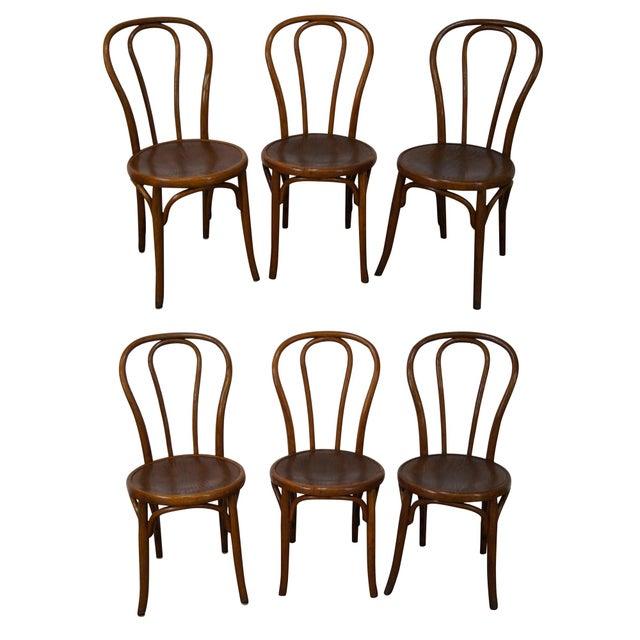 Jacob Josef Kohn Bent Wood Thonet Dining Chairs Set Of 6 Chairish