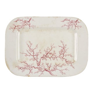 Cherry Blossom English Transferware Platter
