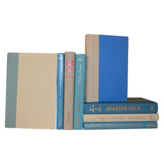 Aqua and Ivory Display Books - Set of 8