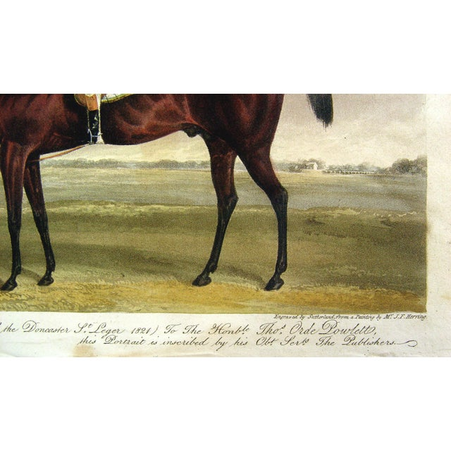Racehorse Portrait Etching, 1822 - Image 4 of 4
