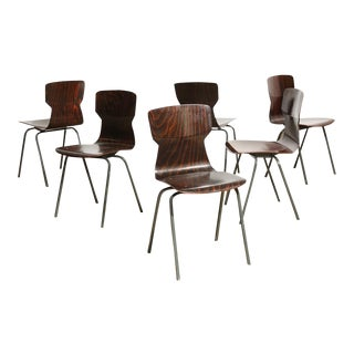 Set of 6 Vintage Bent Plywood Chairs