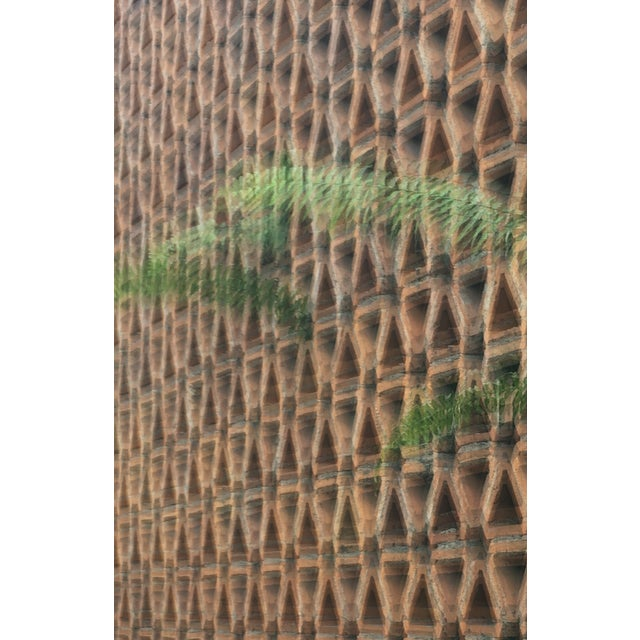 Fern vs Geostructure Photo Collage Print - Image 3 of 4