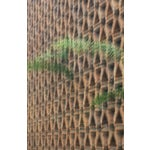Image of Fern vs Geostructure Photo Collage Print