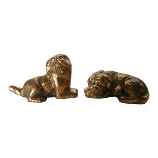 Petite Brass Pups - A Pair