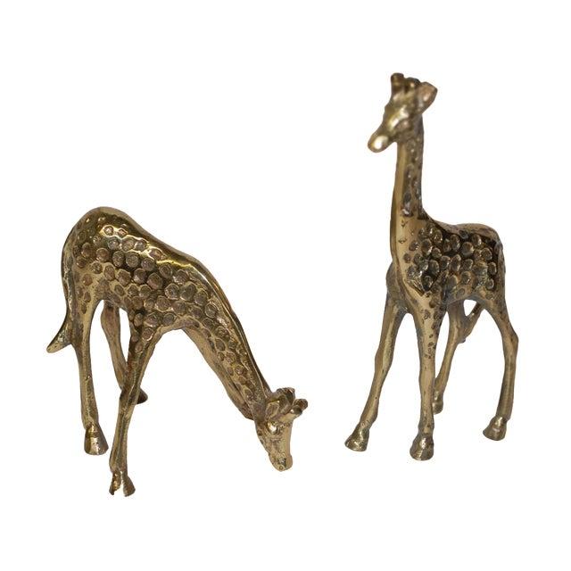 Image of 1950s Brass Giraffe Figurines - A Pair