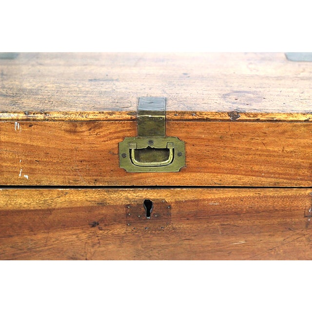 Early 19th Century Walnut and Brass Trunk - Image 3 of 10