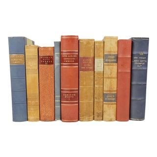 Scandinavian Leather Bound Books - S/10