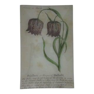 John Derian Fritillary Daffodil Wall Tray