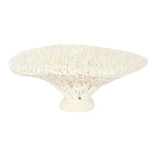 Table Coral Sculpture