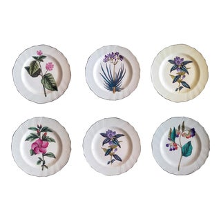 English Earthenware Pottery Set of Six Botanical Plates