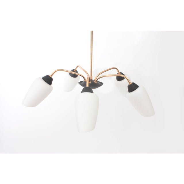 1950s French Glass & Brass Chandelier - Image 3 of 6