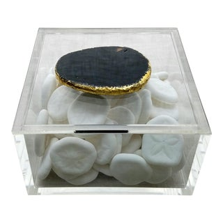 Acrylic Geode Slice Box & Seabiscuits, A Set