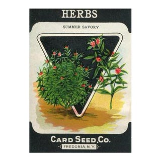 """Herbs"" Seed Packet Birchwood Wall Art"