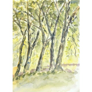 Original Vintage Watercolor Landscape - the Grove
