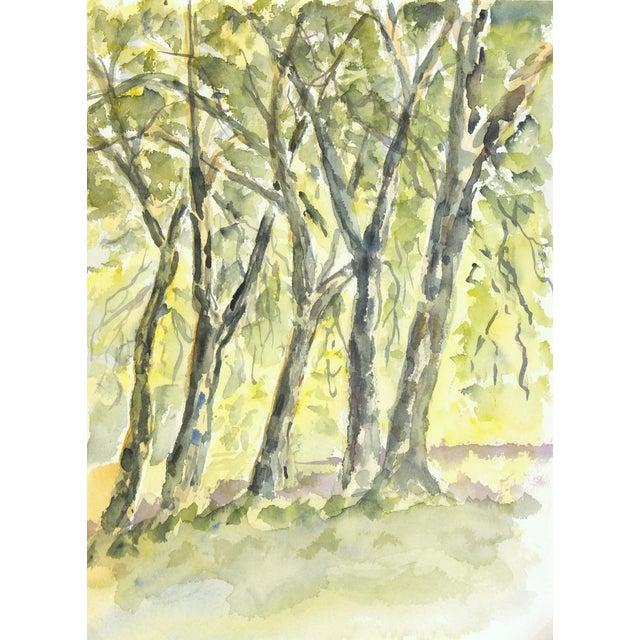 Original Vintage Watercolor Landscape - the Grove - Image 1 of 3