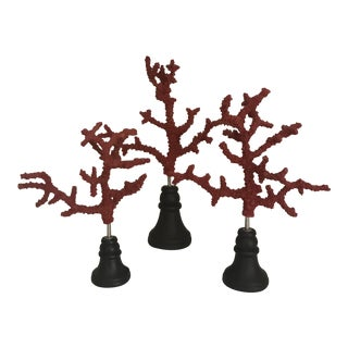 Coral Decor on a Stand - Set of 3
