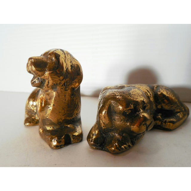 Petite Brass Pups - A Pair - Image 5 of 7