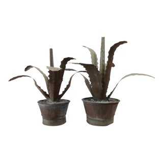 Zinc Potted Succulents - A Pair