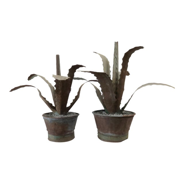 Zinc Potted Succulents - A Pair - Image 1 of 6