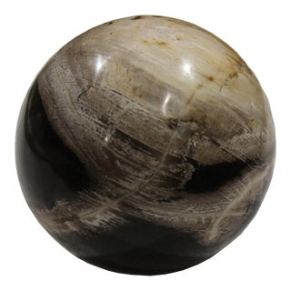 Polished Petrified Wood Ball