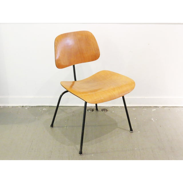 Vintage eames molded plywood dining chair chairish for Eames molded dining chair