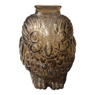 Owl Glass Piggy Bank