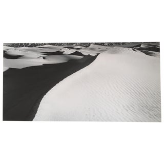 Signed Dune Ridge Photograph by Neil Lawner