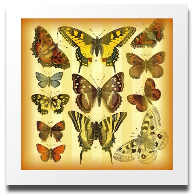 Vintage 'Butterflies on Stripes' Archival Print - Image 4 of 4