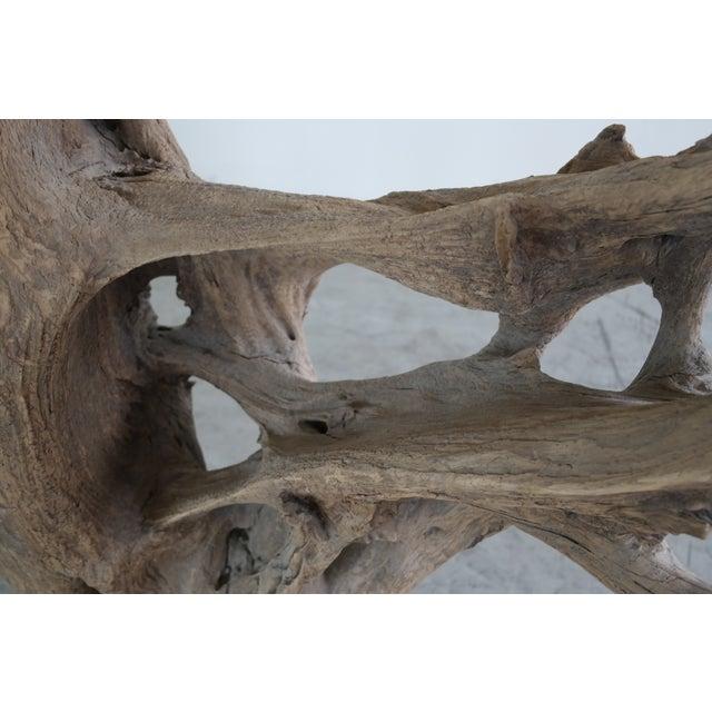 Drift Wood Sculpture - Image 8 of 9
