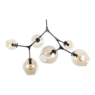 6-Pendant Ceiling Lamp
