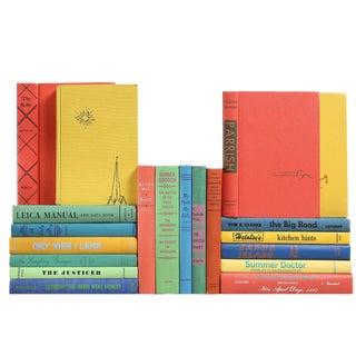 Vintage Rainbow Color Books - Set of 20