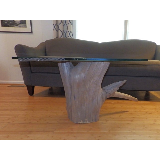 Image of Verina Baxter Cedar Wood and Glass Coffee Table